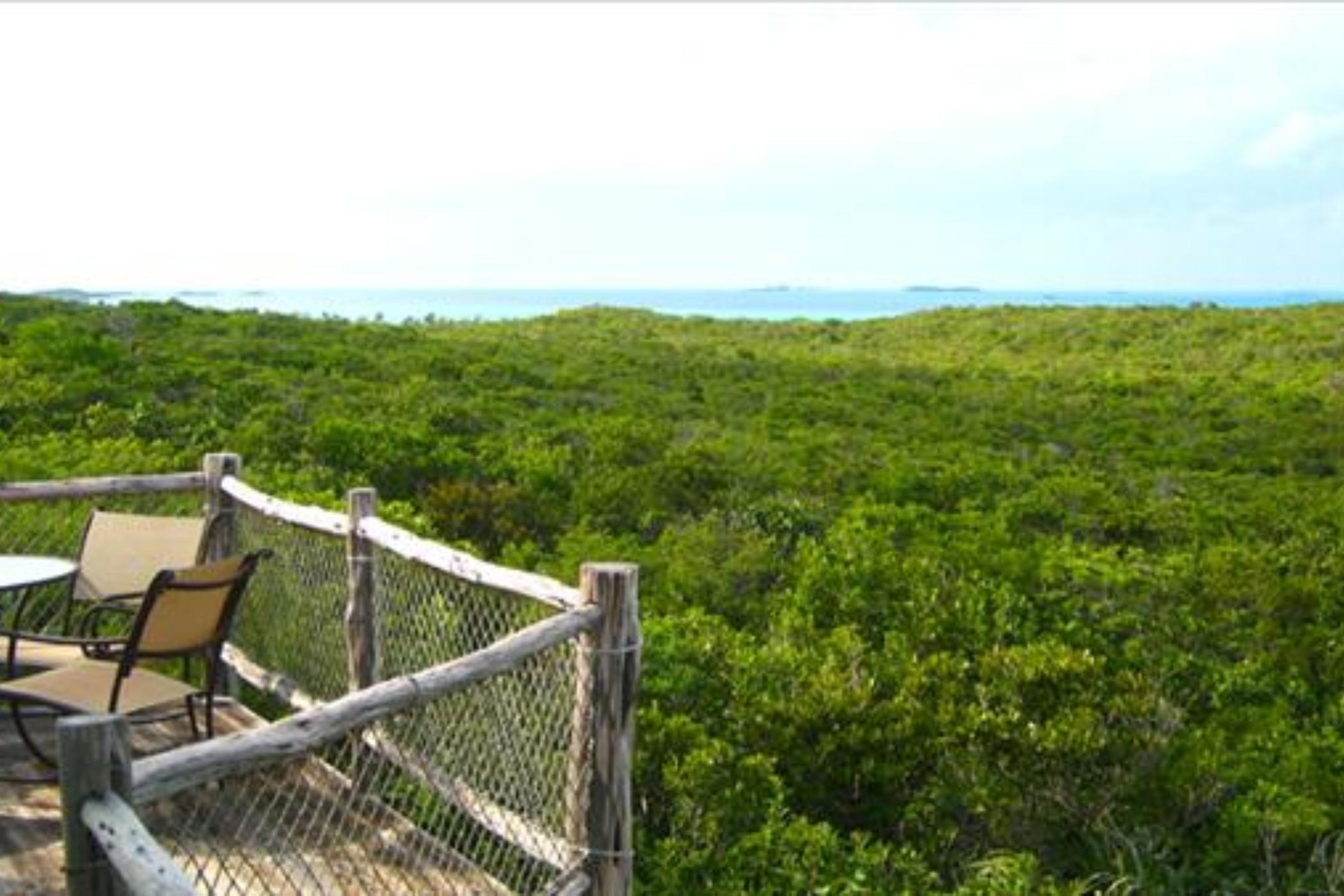 Fowl Cay - Starlight