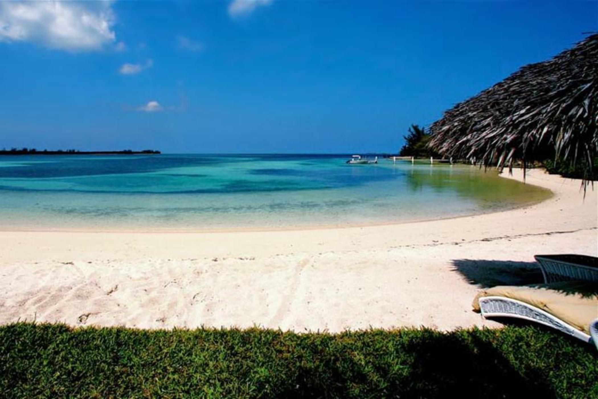 Serendip Cove