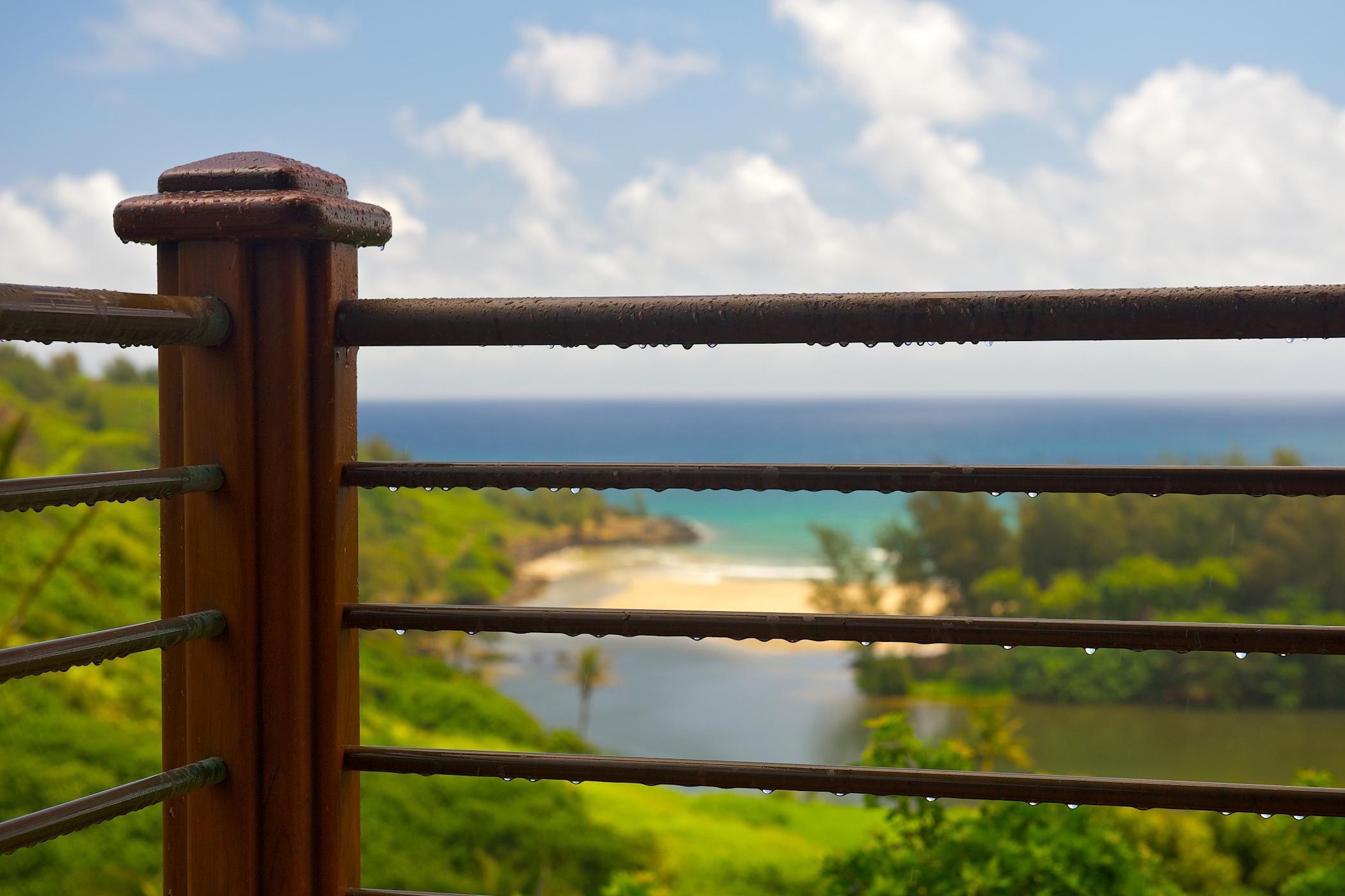 Sea Song at Kahili Bay