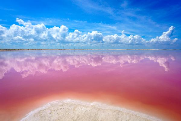 A Guide to Visiting Mexico's Pink Lakes