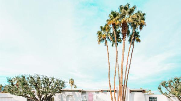 Villa Sierra- That Pink Door