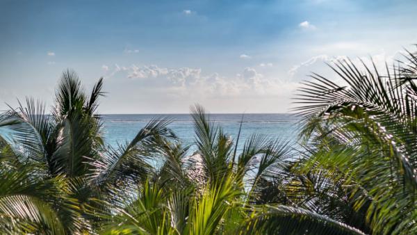 Maya_Luxe_Riviera_Maya_Luxury_Villas_Experiences_Soliman_Bay_5_Bedrooms_Moonstar_3.jpg